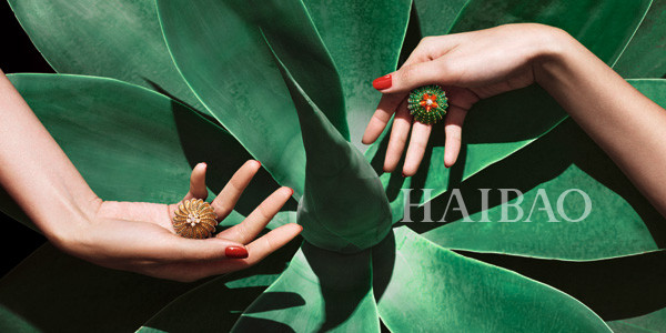 Cactus-de-Cartier-Jewelry