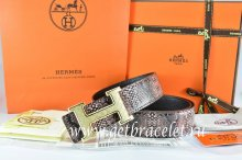 Hermes Reversible Belt Brown/Black Snake Stripe Leather With 18K Gold Plates Strip H Buckle