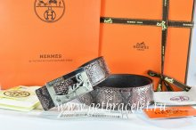 Hermes Reversible Belt Brown/Black Snake Stripe Leather With 18K Silver Coach Buckle