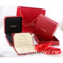 Original Cartier Necklace Packaging Set