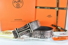 Hermes Reversible Belt Brown/Black Snake Stripe Leather With 18K Black Gold Idem Buckle