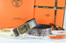 Hermes Reversible Belt Brown/Black Snake Stripe Leather With 18K Gold Lace Strip H Buckle